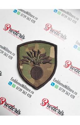 Emblema infanterie combat